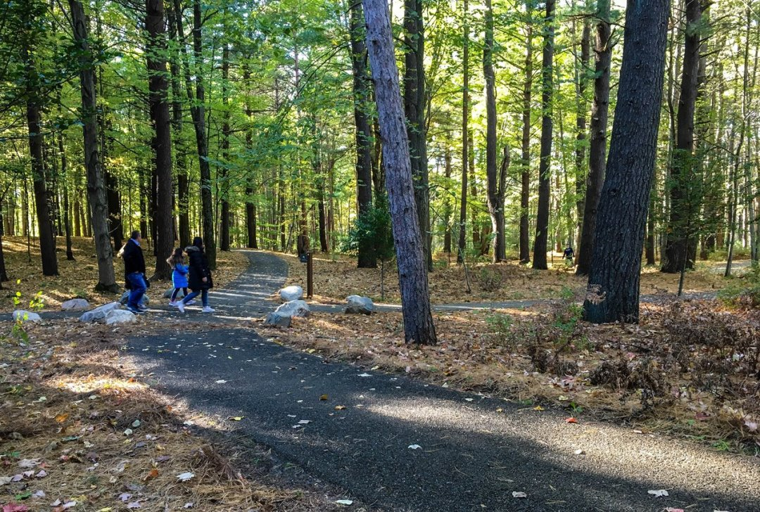 Visitors Enjoy a Walk in the Woods on the Porous Pave Path at Whiting Forest